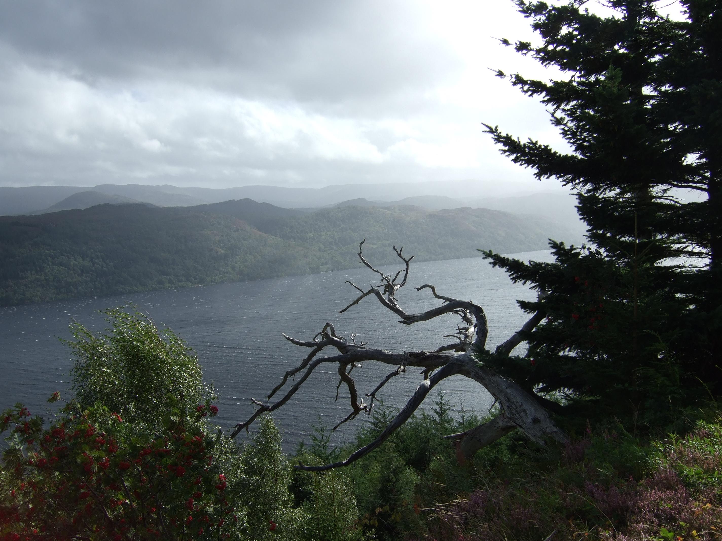 Ausblick auf Loch Ness kurz vor Alltsigh