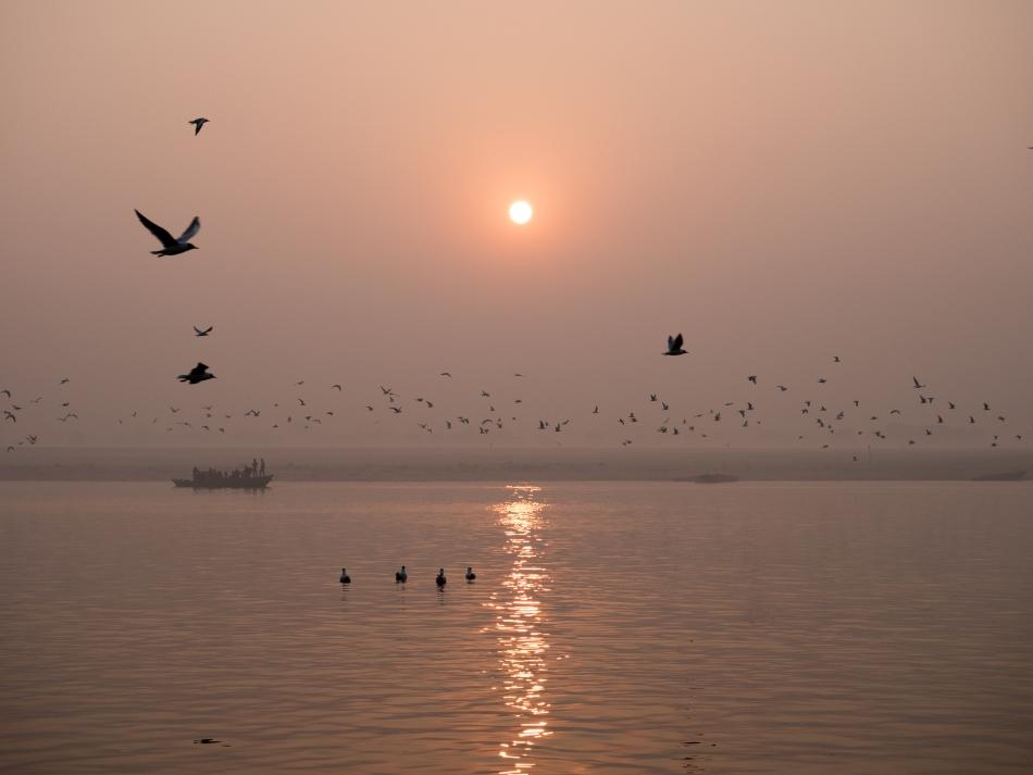 Sonnenaufgang am Ganges in Varanasi mit vielen Vöglen und Boot im Hintergrund